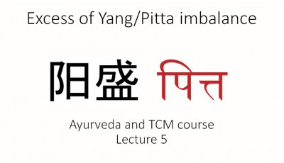 Ayurveda and TCM. Lecture 5. Excess of Yang/Pitta imbalance (Short version)