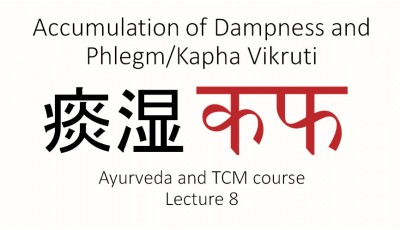 Ayurveda and TCM. Lecture 8. Accumulation of Dampness and Phlegm/Kapha Vikruti