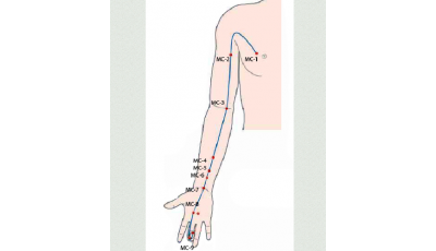 Pericardium channel, diagnosis and methods of influence